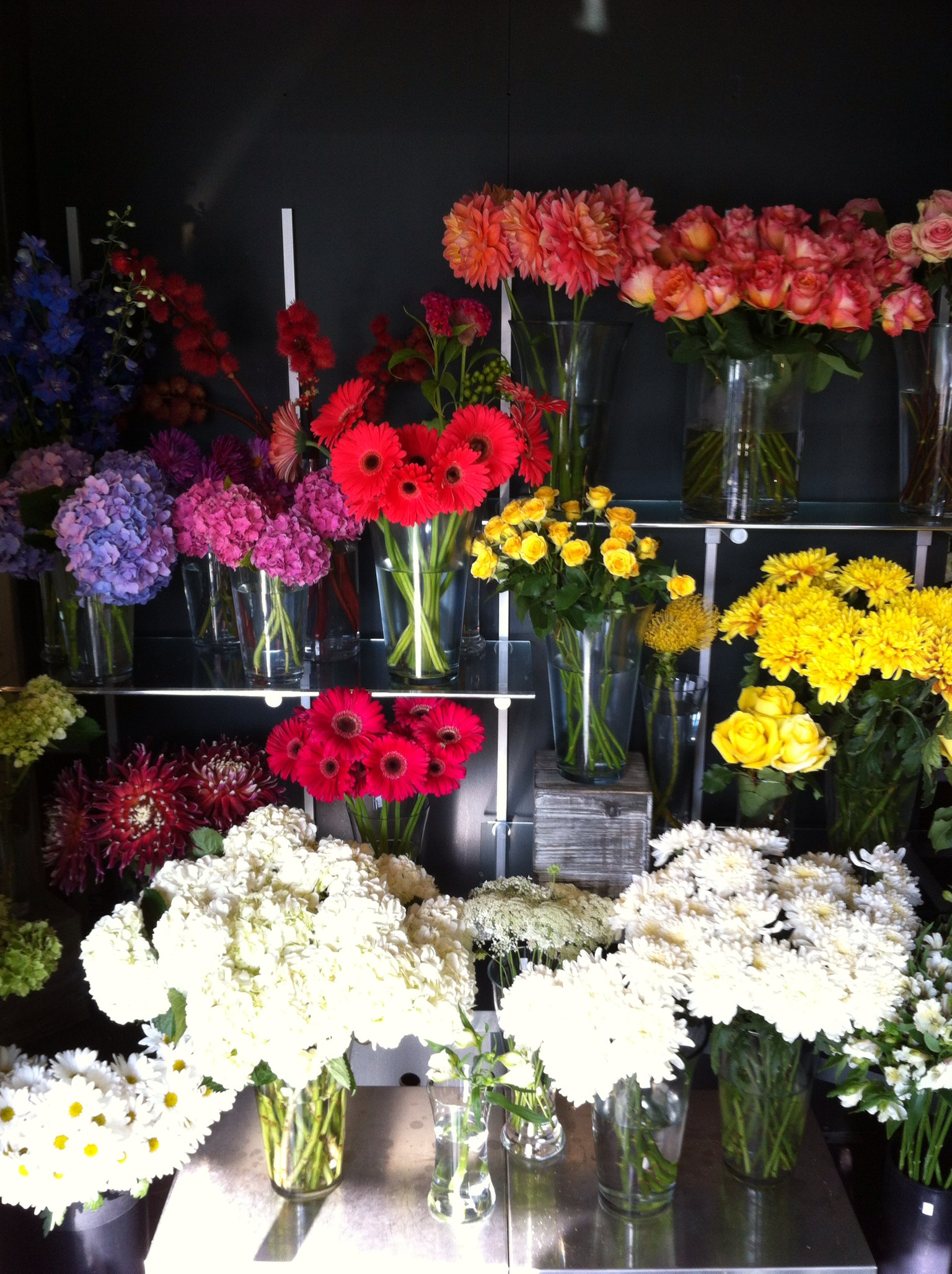 Toronto florist blog tips for choosing the right toronto florist so izmirmasajfo